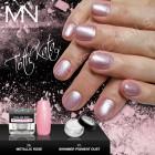 Shimmer Pigment Dust - 10 - 2g